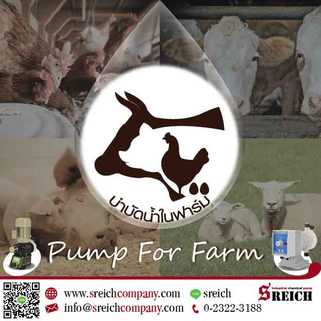 ปั๊มจ่ายสารละลาย คลอรีน วิตามิน จุลินทรีย์ สำหรับฟาร์มปศุสัตว์ Pump for Farm
